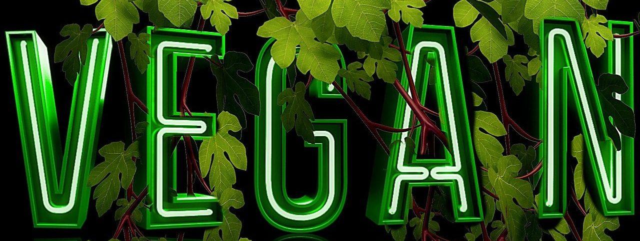 """Leuchtbuchstaben mit Schriftzug """"vegan"""", veganer Wein"""