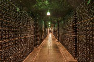 Reifung des Weines